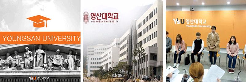 youngsan-university